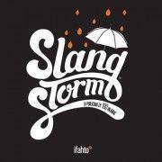portada-libro-slangstorm