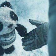 Spot de Tile: Lost Panda